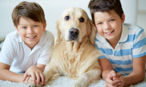 The magic of pet therapy
